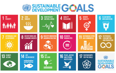 DEMS TO ENABLE NGOS TO ACHIEVE THE 17 SUSTAINABLE DEVELOPEMENT GOALS
